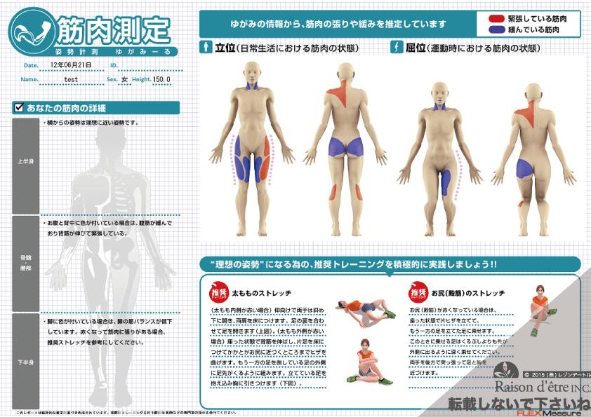 ゆがみーる筋肉レポート